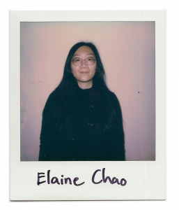 Elaine, artist standing in front of the camera